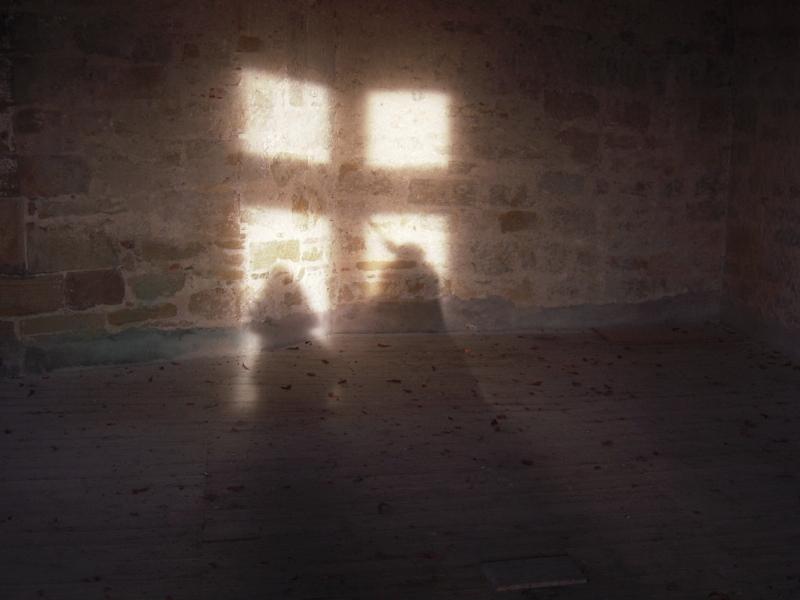 terrine_ombres